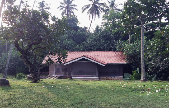 The yoga shala where we practised in Sri Lanka.