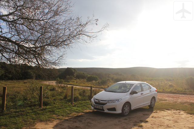 The trusty white Honda Ballade at Bontebok National Park
