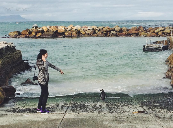 #ThrowbackThursday: Terrorizing the Penguins at Betty's Bay