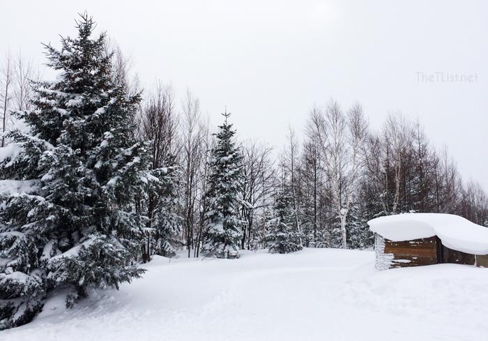 #ThrowbackThursday: White Christmas